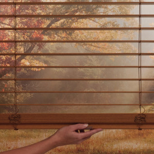 Window Blinds The Shade Company 43