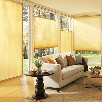 Honeycomb Shades New York City